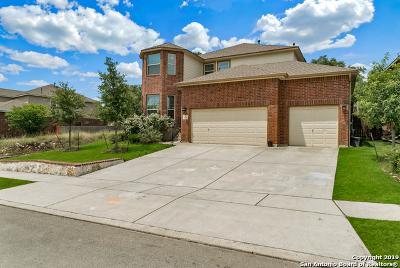 Single Family Home For Sale: 20211 Bristol Mesa