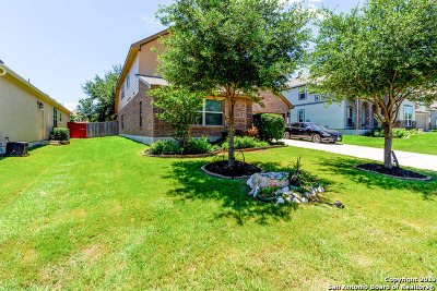 Bexar County Single Family Home New: 11334 Phoebe Lace