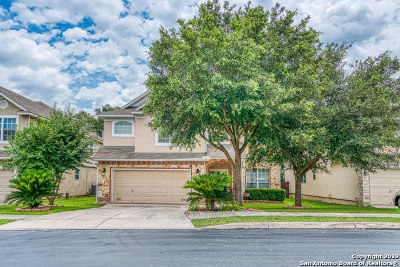 Stone Oak Single Family Home New: 21006 Villa Valencia