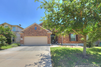 Cibolo Single Family Home New: 313 Canterbury Hill