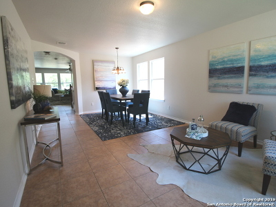 Helotes Single Family Home New: 10215 Huisache Field
