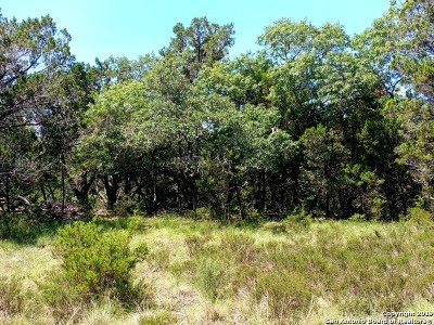 Canyon Lake Residential Lots & Land For Sale: 439 Twilight Dr