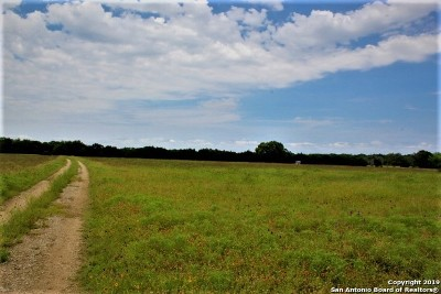 Boerne Farm & Ranch For Sale: 116 Wasp Creek Rd