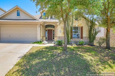 Single Family Home New: 21842 Dolomite Dr