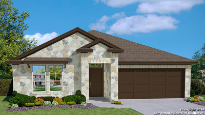 New Braunfels Single Family Home New: 501 Summersweet