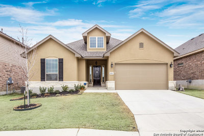 Bexar County, Kendall County Single Family Home New: 8315 Dianthus Stead