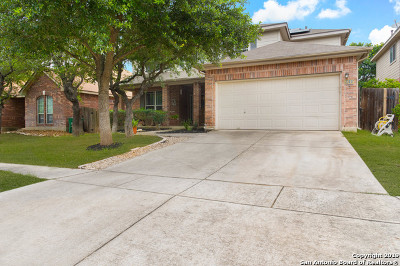 Helotes Single Family Home New: 8615 Cantua Creek