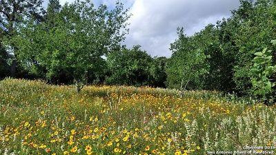 Atascosa County Residential Lots & Land New: 210 Hidden Meadows Circle