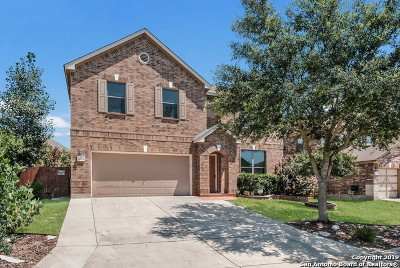 Single Family Home For Sale: 4519 Echo Grove