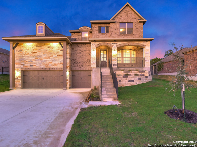 Helotes Single Family Home New: 10427 Valle Alto