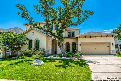 San Antonio Single Family Home New: 17815 Hillsedge