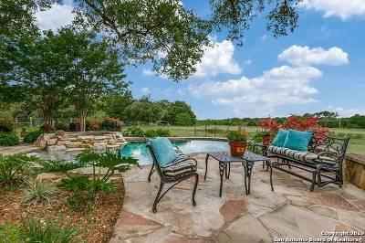 Fair Oaks Ranch Farm & Ranch For Sale: 29755 No Le Hace Dr