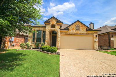 New Braunfels Single Family Home New: 1207 Legacy Dr