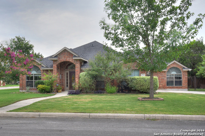 Single Family Home For Sale: 9722 Wind Gate Pkwy