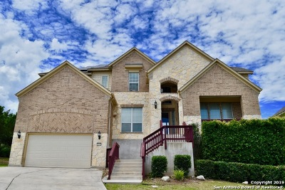 Helotes Single Family Home New: 12934 Walking Horse