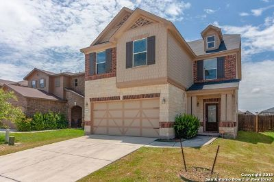 Single Family Home For Sale: 9922 Tampke Falls