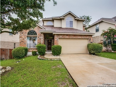 Stone Oak Single Family Home New: 419 Coyanosa Falls