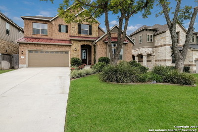 San Antonio Single Family Home For Sale: 1706 W Terra Alta Dr