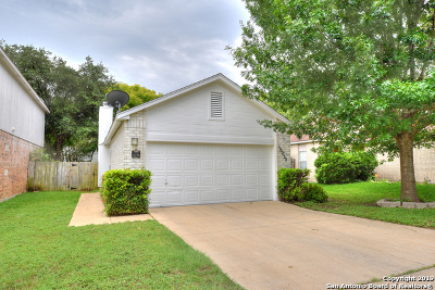 Bexar County Single Family Home New: 12230 Netherwood Ln