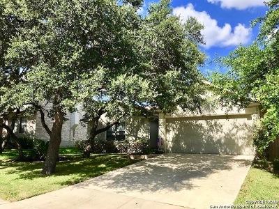 Stone Oak Single Family Home Active Option: 22018 Legend Point Dr