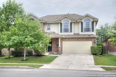 Bexar County Single Family Home New: 5807 Palmetto Way