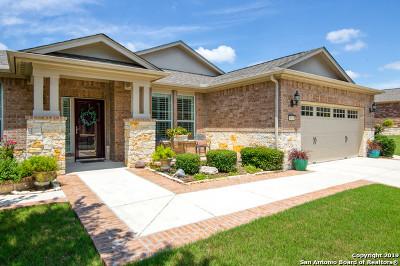 San Antonio Single Family Home New: 4011 Buffalo Bur