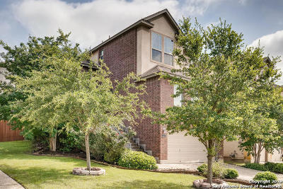 Stone Oak Single Family Home For Sale: 1327 Tweed Willow
