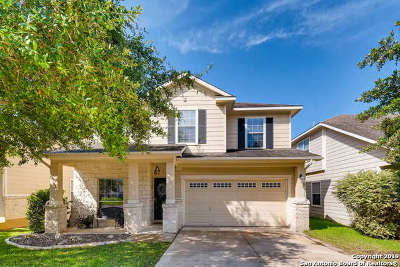 Stone Oak Single Family Home New: 23611 Silversmith