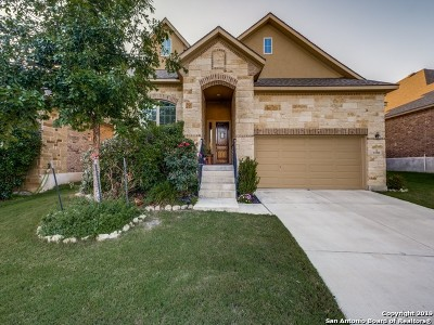 Bexar County Single Family Home New: 11911 Bailey Hills
