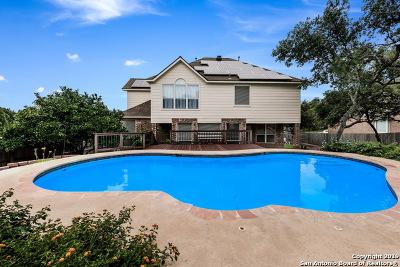 San Antonio Single Family Home New: 13027 Vista Haven