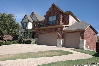 San Antonio Single Family Home New: 914 Gazania Hill