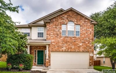 San Antonio Single Family Home New: 11635 Valley Garden