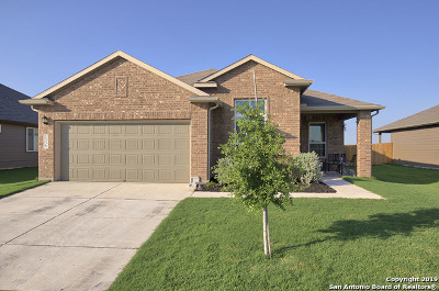 New Braunfels Single Family Home New: 1339 Fall Cover