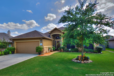New Braunfels Single Family Home Active Option: 2274 Sun Chase Blvd