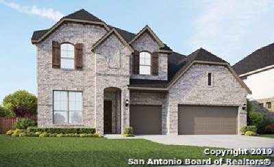 Boerne Single Family Home For Sale: 113 Destiny Drive