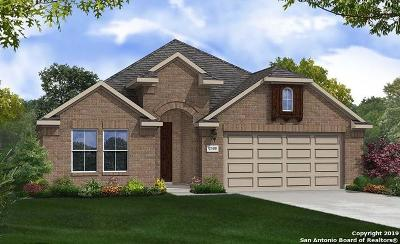 Boerne Single Family Home New: 112 Destiny Drive