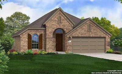 Boerne Single Family Home New: 116 Destiny Drive