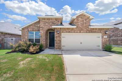 San Antonio Single Family Home New: 7119 Ravensdale