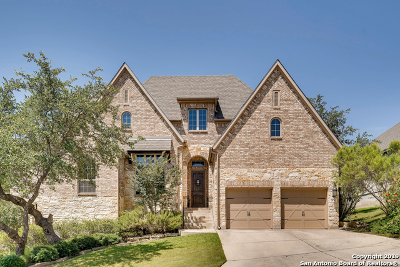 Boerne Single Family Home For Sale: 28703 Kings Gate