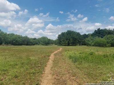 Atascosa County Farm & Ranch For Sale: 345 Pinn Rd