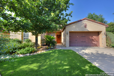 Bexar County Single Family Home New: 22450 Viajes