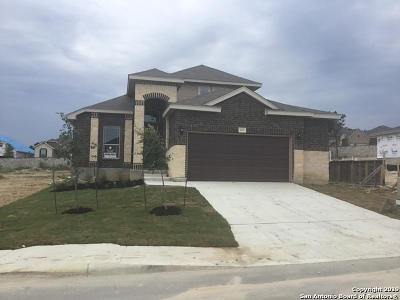 Helotes Single Family Home New: 10119 Bricewood Run