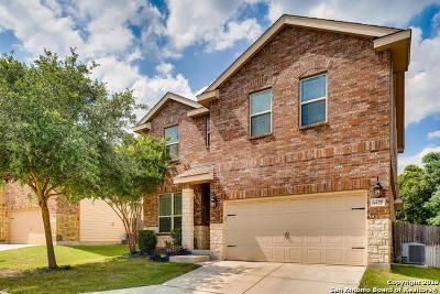 San Antonio Single Family Home New: 6435 Lionheart Park