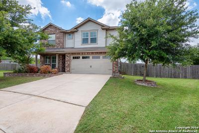 San Antonio Single Family Home New: 260 Nesting Tree