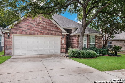 Bexar County Single Family Home New: 1307 Salazar Trl