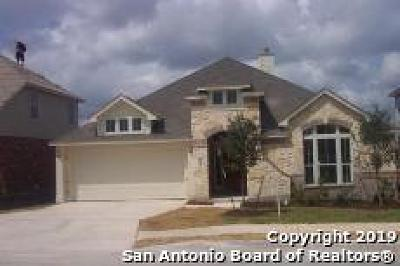 Bexar County Single Family Home New: 22019 Ruby Run