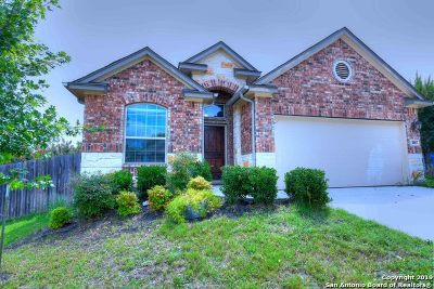 Guadalupe County Single Family Home New: 2017 Dove Crossing Dr