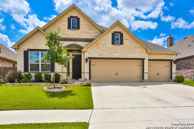 Boerne Single Family Home New: 230 Woods Of Boerne Blvd