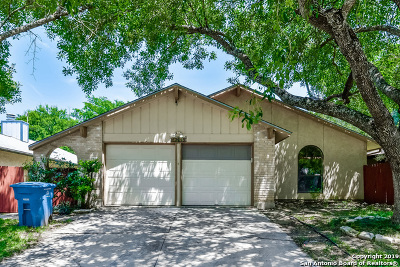 San Antonio Single Family Home New: 13418 Pebble Hollow