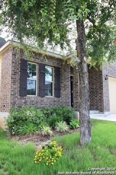 San Antonio Single Family Home New: 10610 Blue Wolf Pier